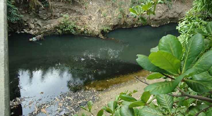 consultores-ambientales-del-ecuador